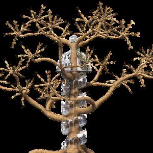 tree-1511604_640